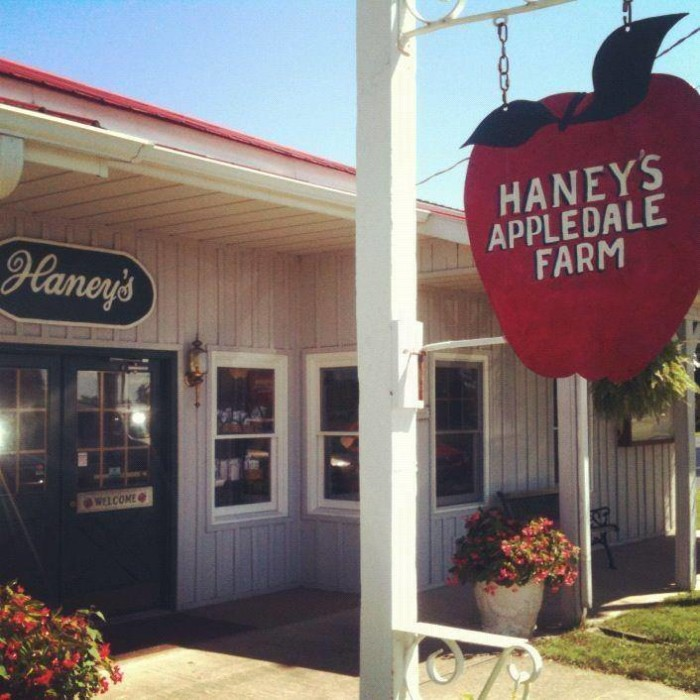 2. Haney's Apple Dale Farm