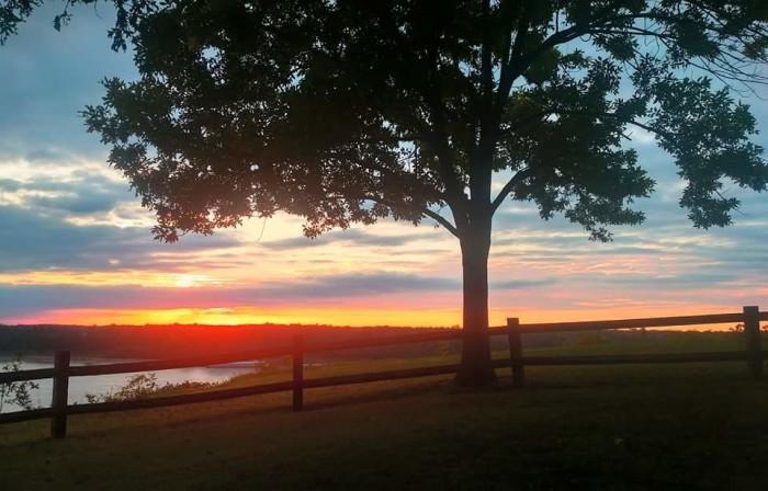 14. A perfect field scene in Hickman County.
