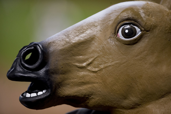8. Horseheads