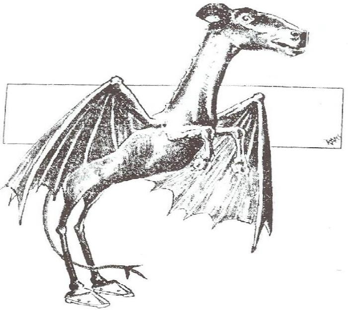 16. Jersey Devil