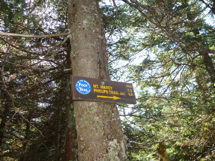 If you decide to take the most commonly used Van Hoevenberg trail you'll be in luck!