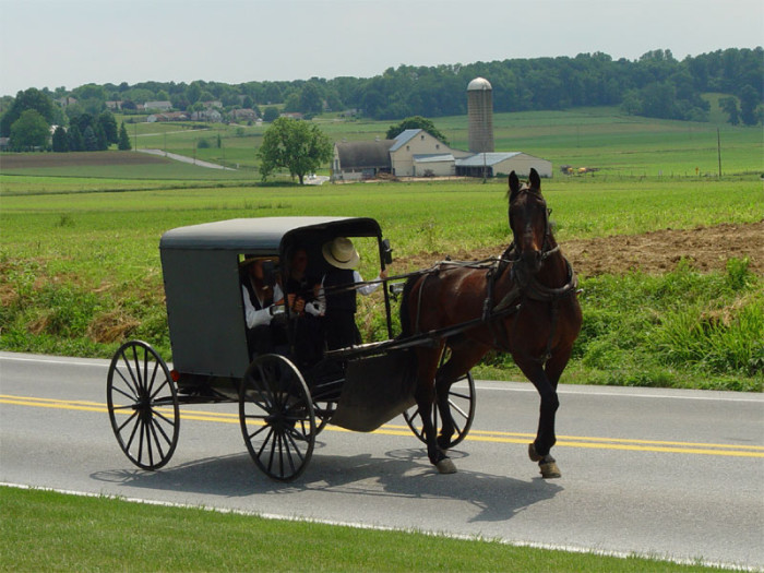 8. The highest Amish population in the world.