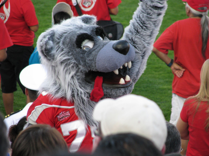 1. They are dressed in layers. One of these layers references the Lobos.