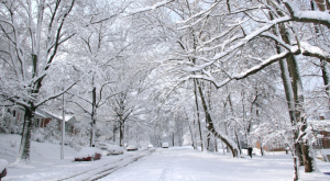 11 Thoughts Everyone In Maryland Has When Snow Is Coming