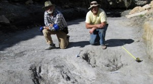 What They Discovered About Dinosaurs At The University of Colorado Denver Is Mind-Blowing