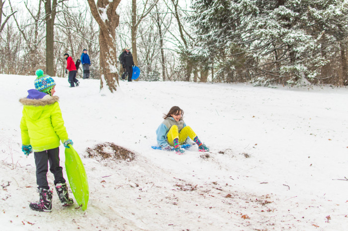 7. Fun at the local park, running up and down the hill with my sled.