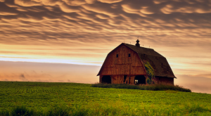 13 Photos That Prove Rural Iowa Is The Best Place To Live