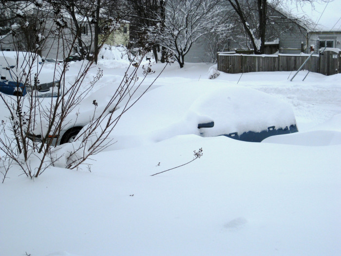 Step 8: By now, it's day two. You're out of French Toast. It's time to shovel out.