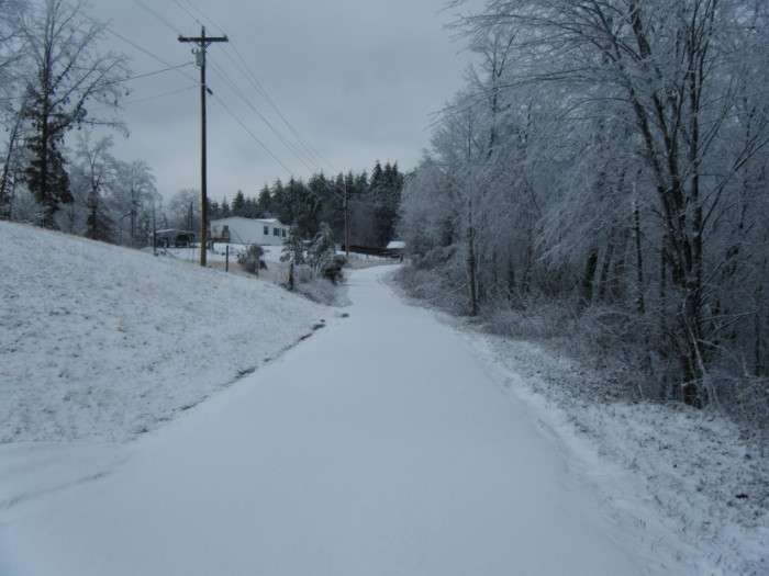 8. Snow road