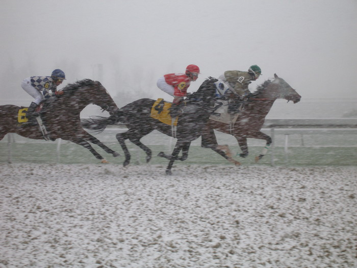 14. Snow day at the track