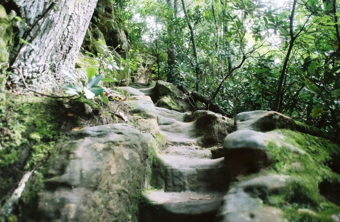 Stepping stones: