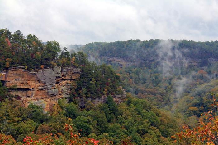 Swift Camp Creek Overlook.: