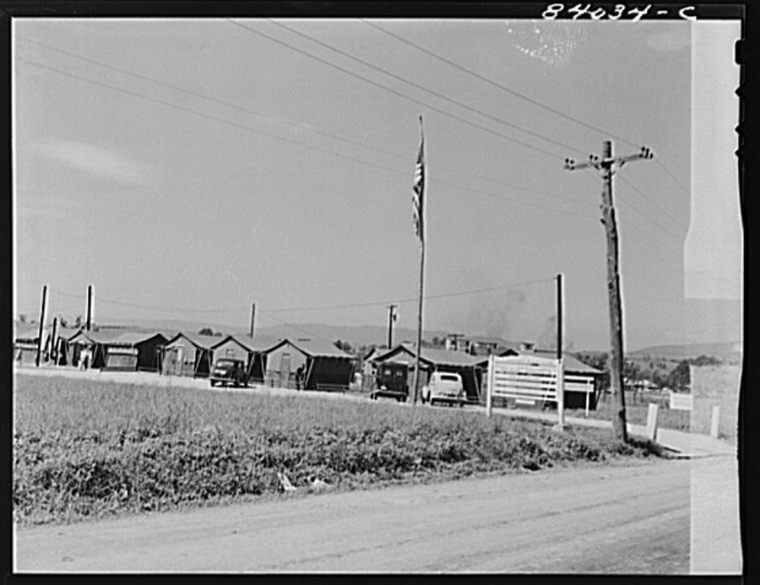 15. A farm labor camp built by the Farm Security Administration in Timberville, Rockingham County, 1942.