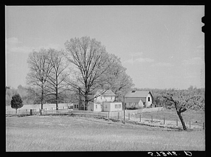 17. A farm in Fairfax County near Vienna, 1941.