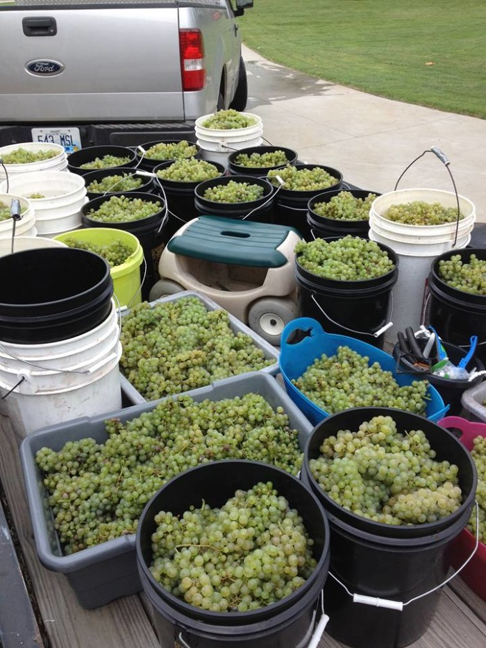 2. Visit one or more of our wineries.