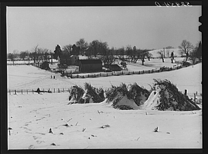 18. A large, well-kept farm covered in snow in Warrenton, 1940