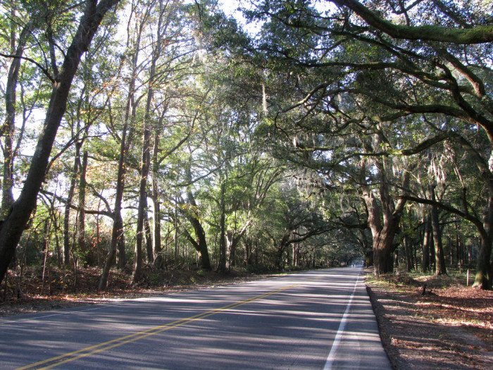 2. Bohicket Road Scenic Highway - Charleston to Kiawah Island