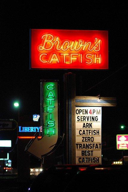 1. Brown's Catfish