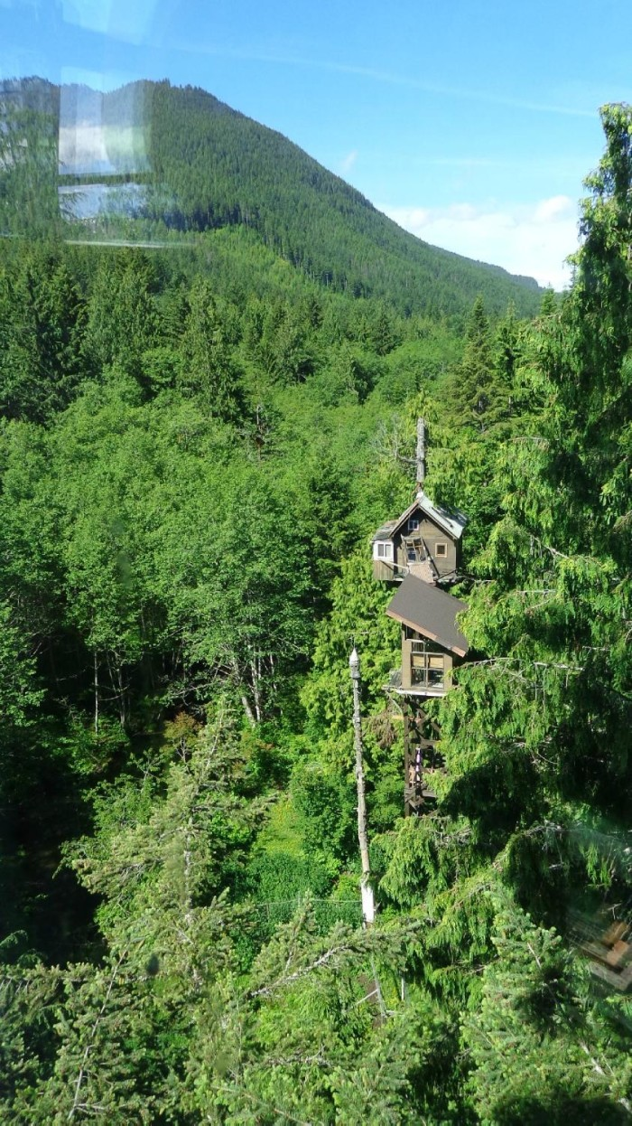 You can find this treehouse resort surrounded by Evergreen forest, 50-feet high up in a cedar tree with a breathtaking view of the creek below.