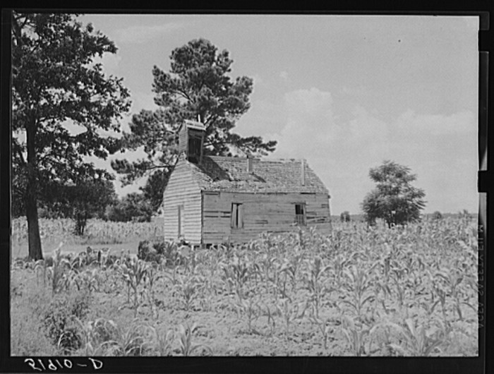 17. Church in a cornfield near Manning, SC. 1939.