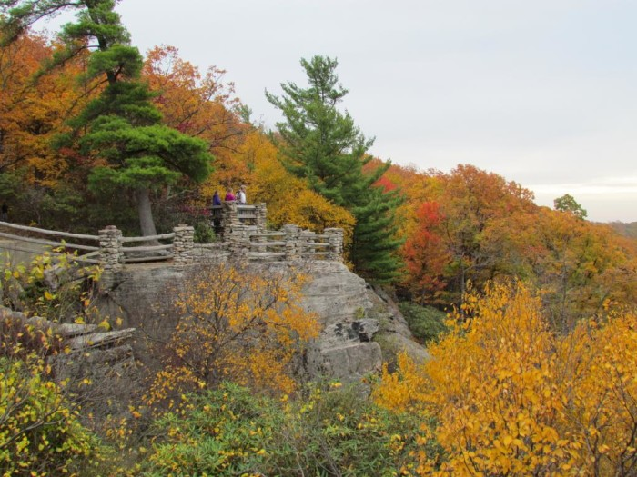 12. Coopers Rock State Forest