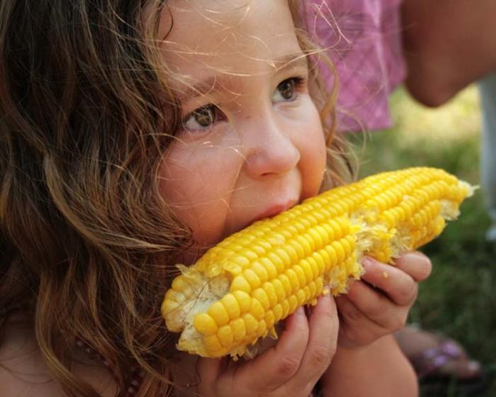 1. Do you guys just eat corn?
