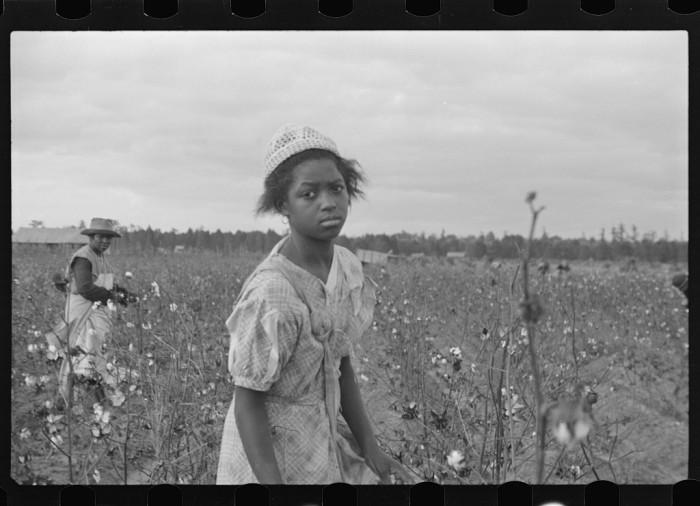 7. Pulaski County Cotton Field Workers