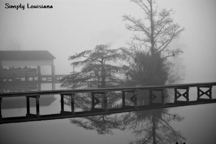 11. Another foggy day on the lake in Lake Arthur, LA