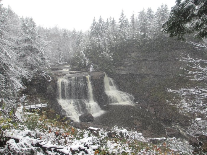 Though they aren't in this picture, the falls will often freeze over completely in the winter.