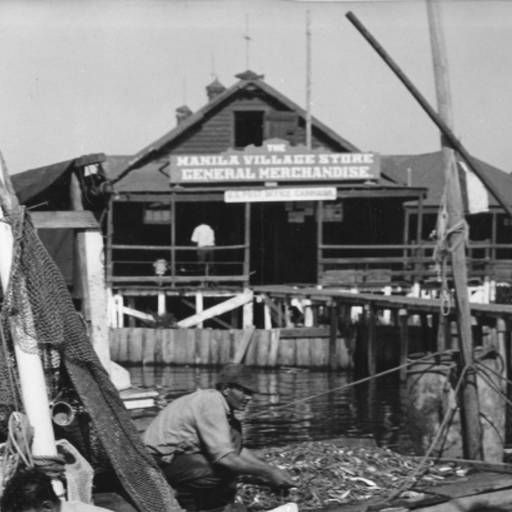 3. Unloading the day's shrimp catch in Manila Village Louisiana in the 1950s