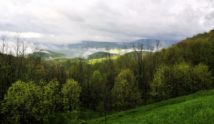 4. Here, fog rolls into a valley in Pocahontas County,