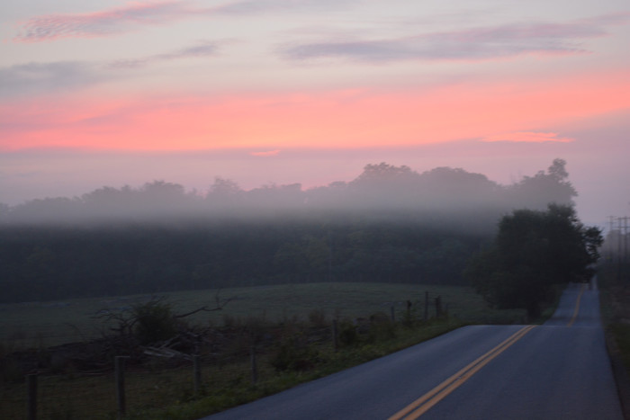 12. This morning shot along a country road in West Virginia.