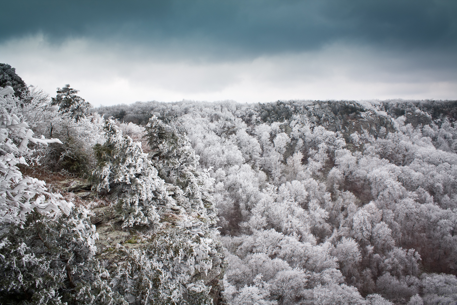 12 times snow transformed arkansas into the most beautiful