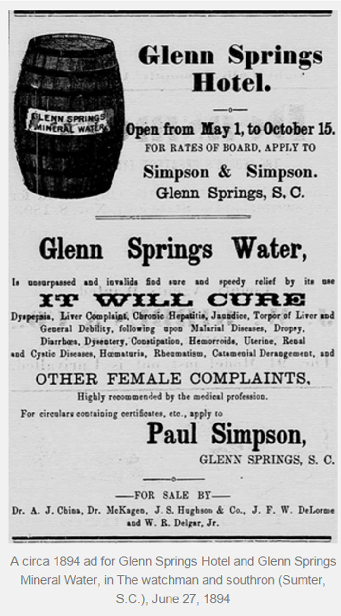 An ad for the Glen Springs Hotel and the packaged mineral water you could purchase from the nearby Glen Springs. 1894.