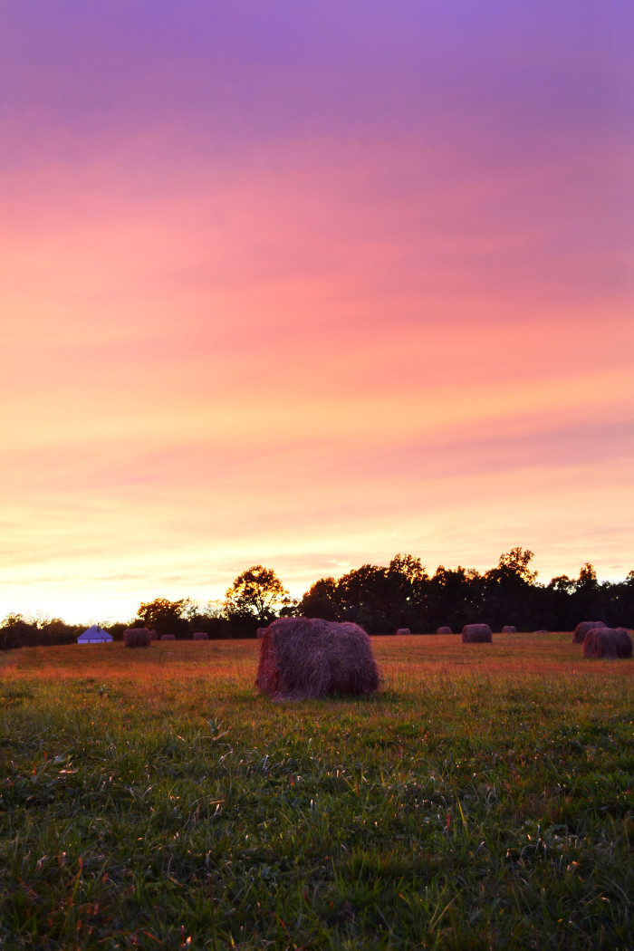 6. Hay bales and the setting sun.