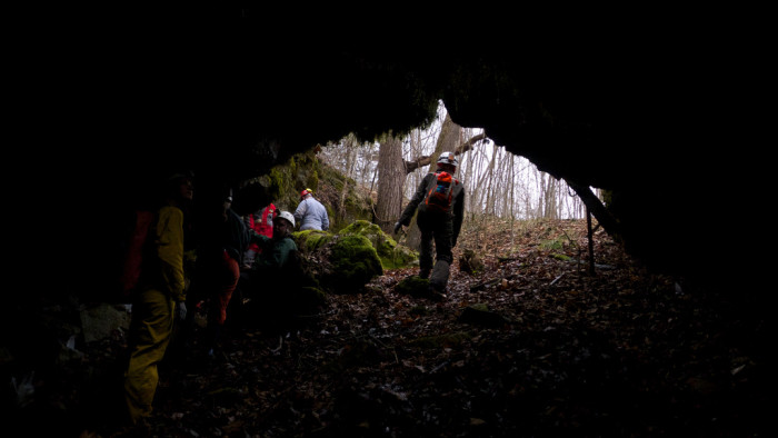 5. Higginbotham Cave in Greenbrier County