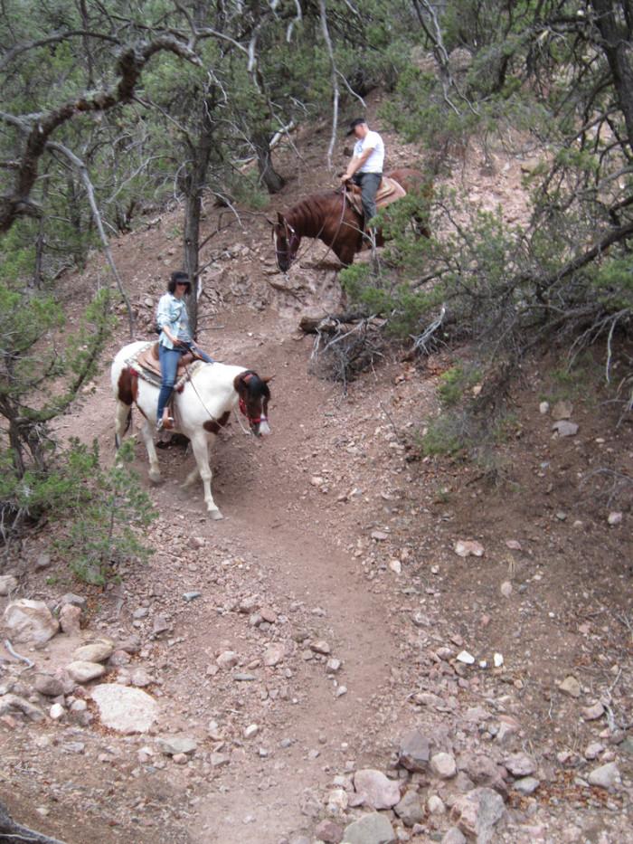 8. On a horseback ride