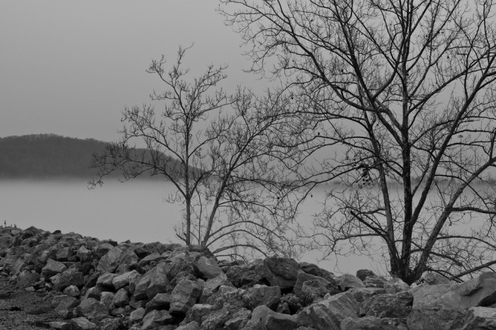 11. This one was taken along the banks of the Kanawha River in Winfield.