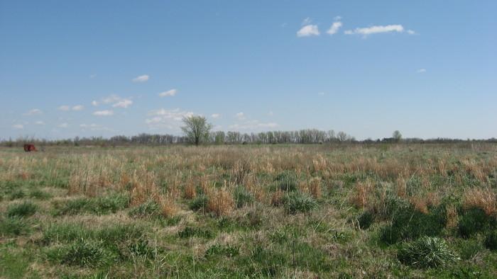 2. The Mound Sites