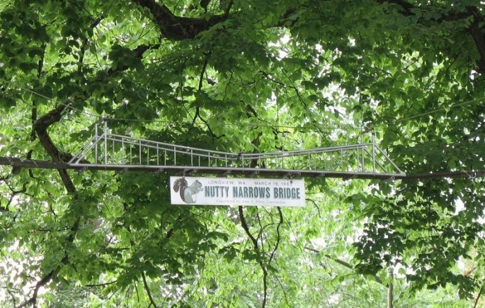 3. Nutty Narrows Bridge, Longview