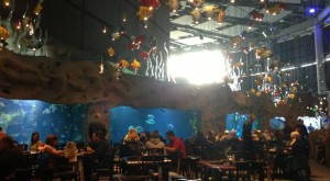 11 Themed Restaurants That Will Transform Your Colorado Dining Experience