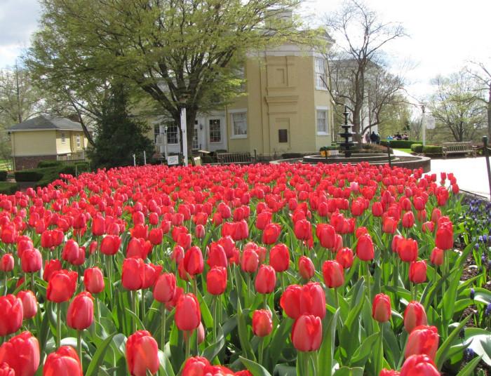 9. The flower gardens at Oglebay Park in Wheeling