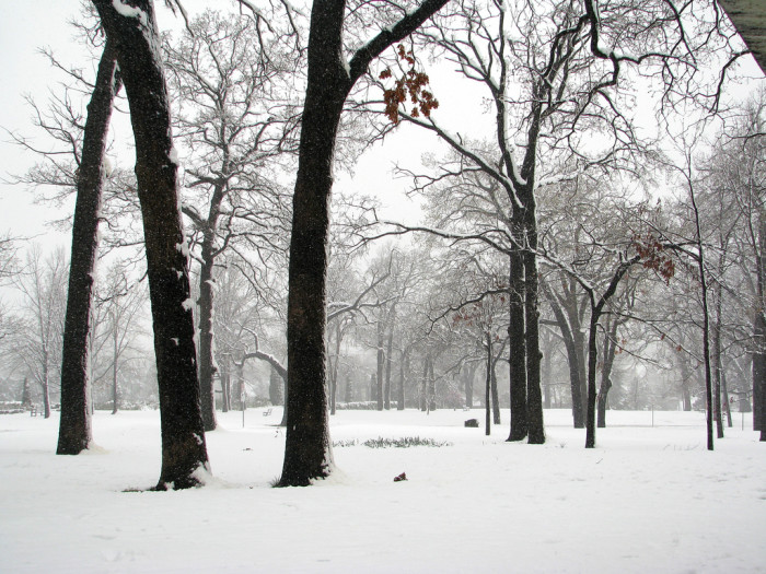 3. Visit one of the many city parks in the state.