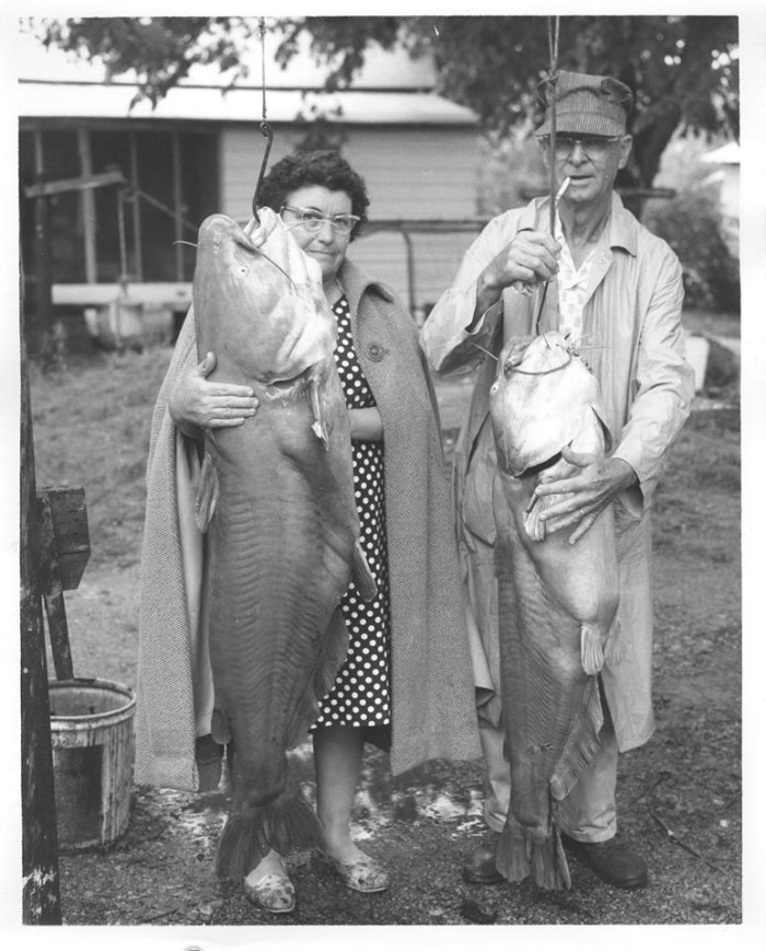 1. Taken in 1950, from the Tishomingo National Fish Hatchery file. Hopefully, they bought a bigger frying pan because these enormous blue catfish didn't get thrown back.