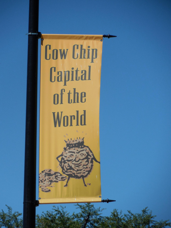 9. We are the Cow Chip Throwing Capital of the World.
