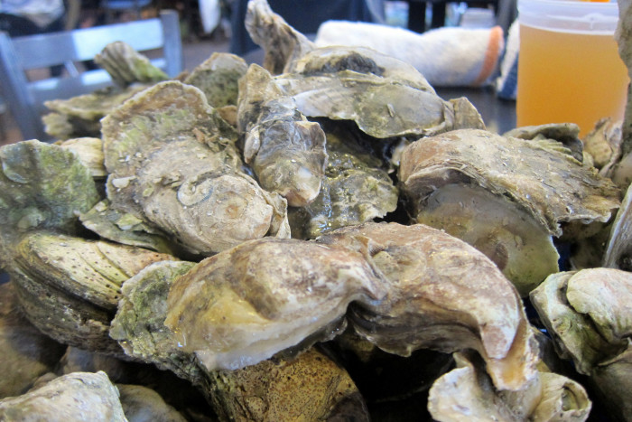 O is for Oyster Roasts