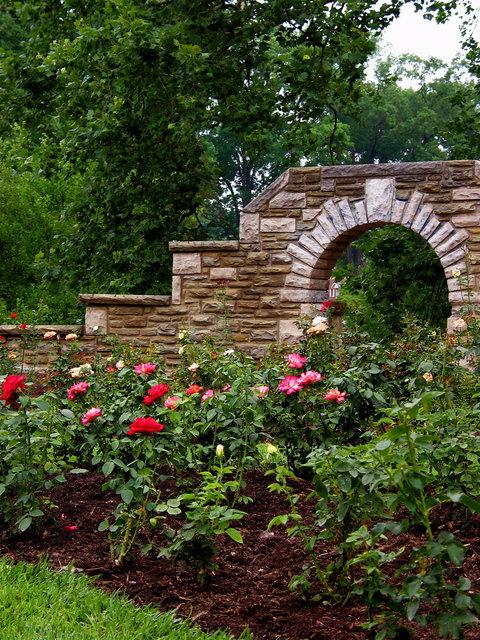 11. The Ritter Park Rose Garden in Huntington