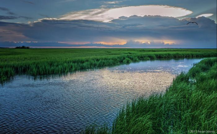 salt-marsh-at-sunset-hunting-island-huan-luong