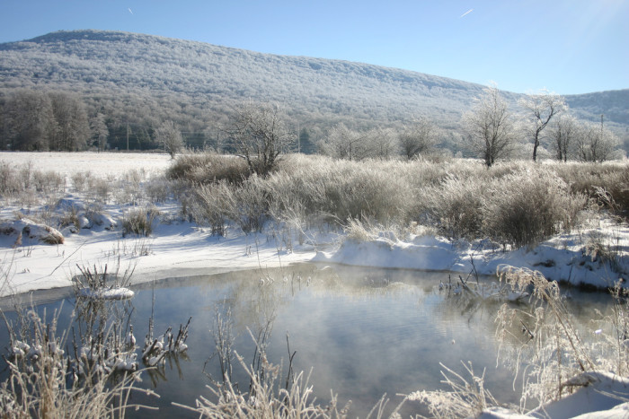 4. This picture of a snowy West Virginia pond in winter.