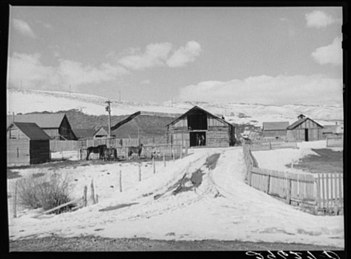 13. Summit County Farm